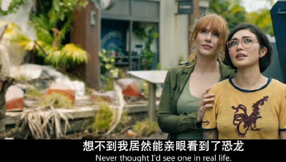 2018年8月《侏罗纪世界2》美版中文字幕超清分享